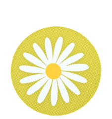 Coaster Daisy Lime